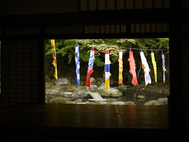 20110505-hniwa1.jpg